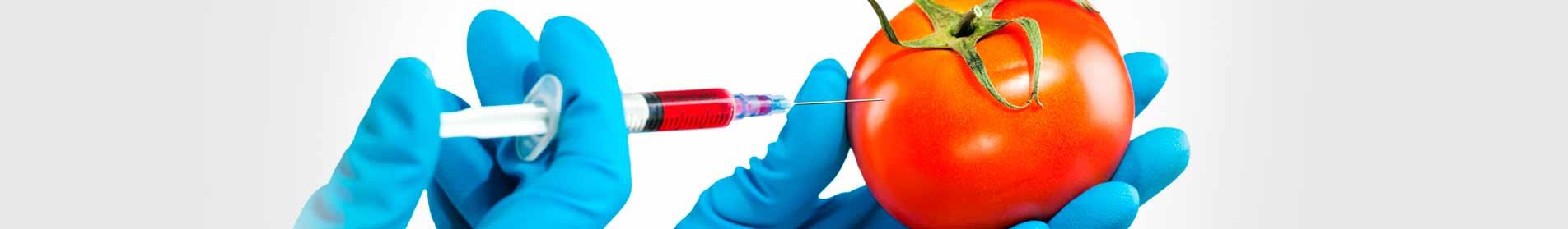 Mundiquímica | aditivos alimentares